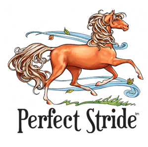 Perfect Stride™ The Horse Card Game